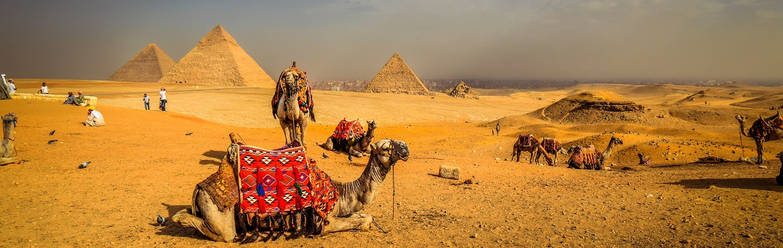 Day Tour to Giza Pyramids & Sakkara