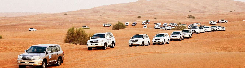 Deluxe Dubai Safari Tour
