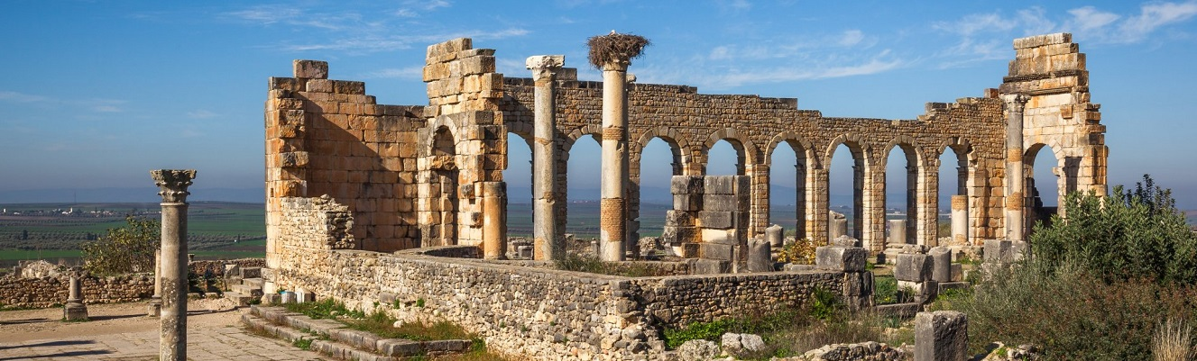 Meknes and Volubilis Day Tour from Rabat