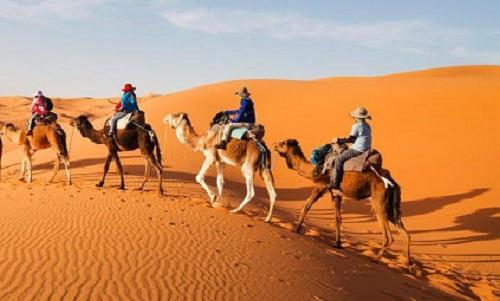 Sahara Tour from Agadir map