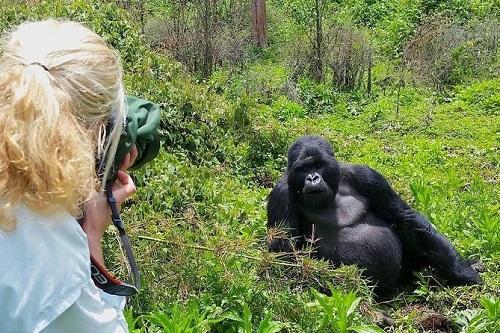 Uganda Gorilla Tour map